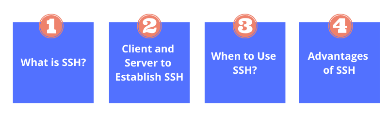 WordPress SSH